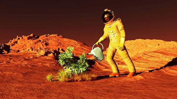 How to grow crops on Mars if we are to live on the red planet: