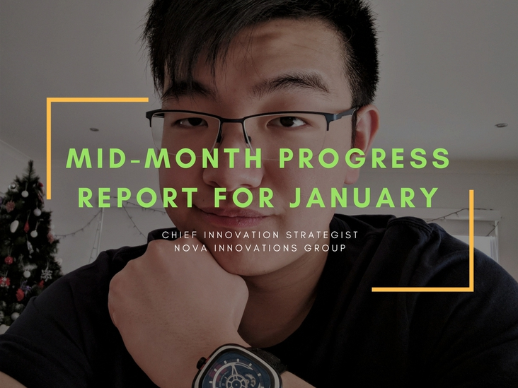 Progress Report for Mid-January